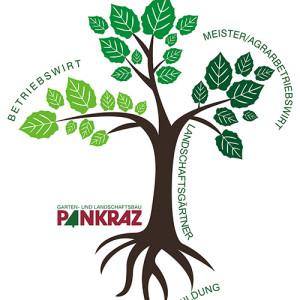 Pankraz-Ausbildungsberufe-Baum
