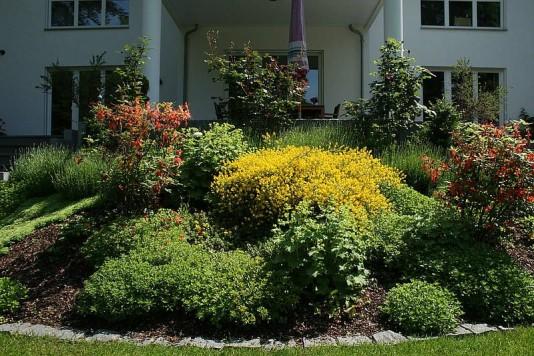 galabau-pflanzen-vegetation-2